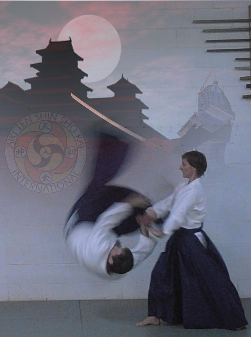 Aiki-Ten-Shin-Sho-Kai.jpg