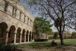 University-of-queensland.jpg